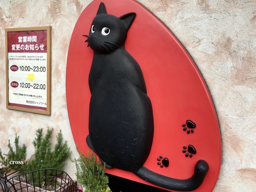 シャノワール黒猫