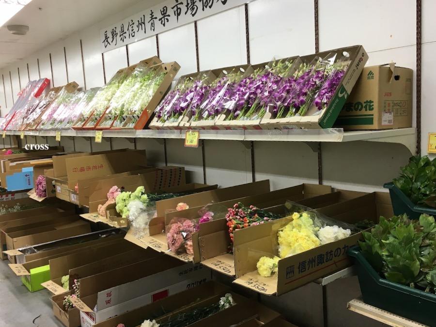 大阪園芸センターの花