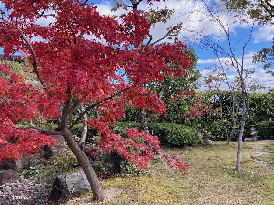 小倉山荘ダイニングファーム